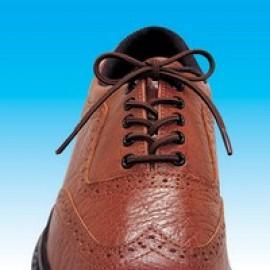 Shoe Lace Elastic
